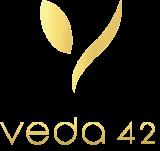 Veda42 logo
